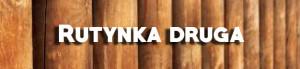 tło-drewno-drewno_19-124534-1-300x69