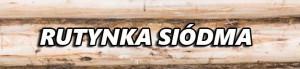 tło-drewno-drewno_19-124534-6-300x69