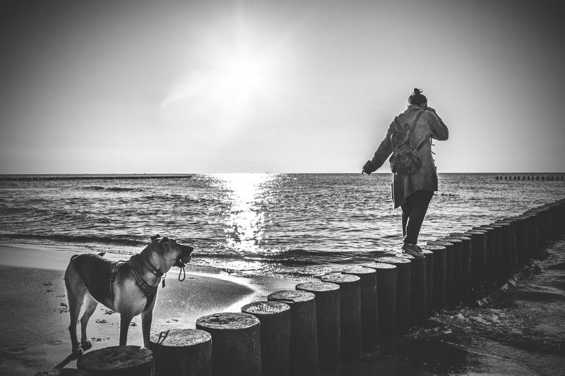 Darlowo-z-psem-blog-psi-prawieowczarkowelove16-1