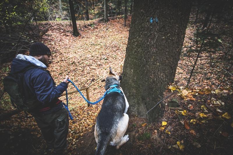 Rezerwat-z-psem-blog-psi-prawieowczarkowelove33