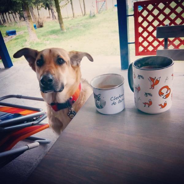 husinka-chatka-swieta-urlop-blog-psach-19